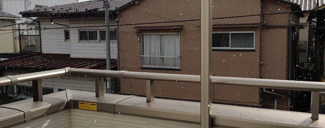 晴れているのに雪が!風花?