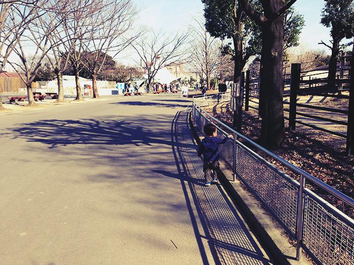 東武動物公園は全然混んでいませんでした